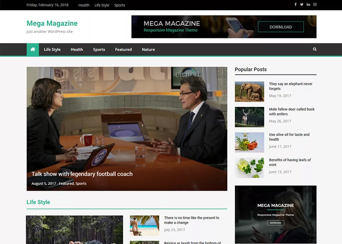 Theme Mega Magazine