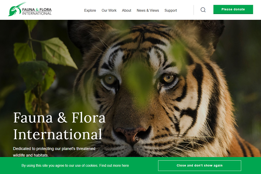Site Fauna & Flora International