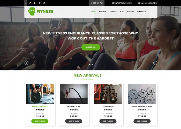 Theme Core Fitness