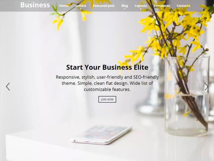 Тема Business Elite