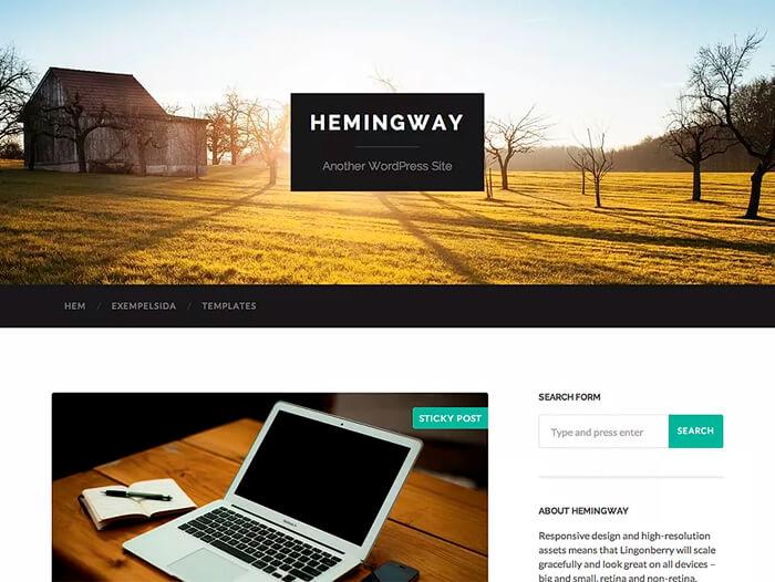 Тема Hemingway