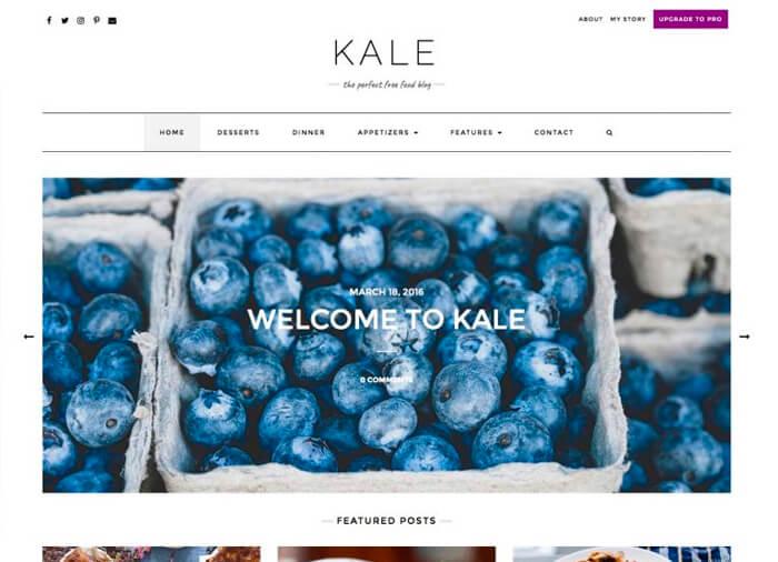 WordPress Theme Kale