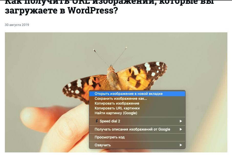 Открытие картинки в новой вкладке браузера