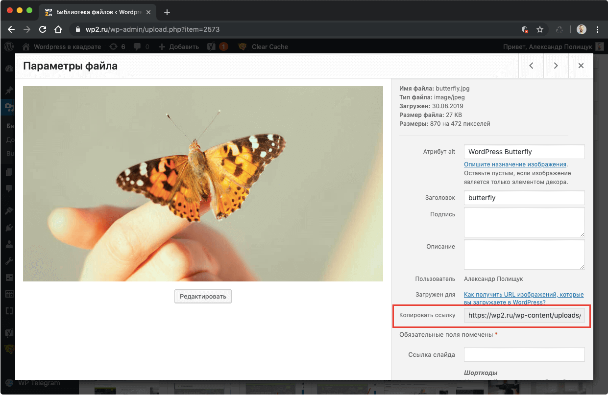 Ссылка на изображение в Медиабиблиотеке WordPress